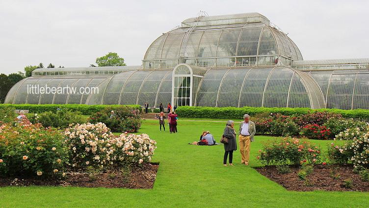 【英格蘭Day3-1】倫敦:世界遺產 – 皇家植物園邱園(Royal Botanic Gardens, Kew)