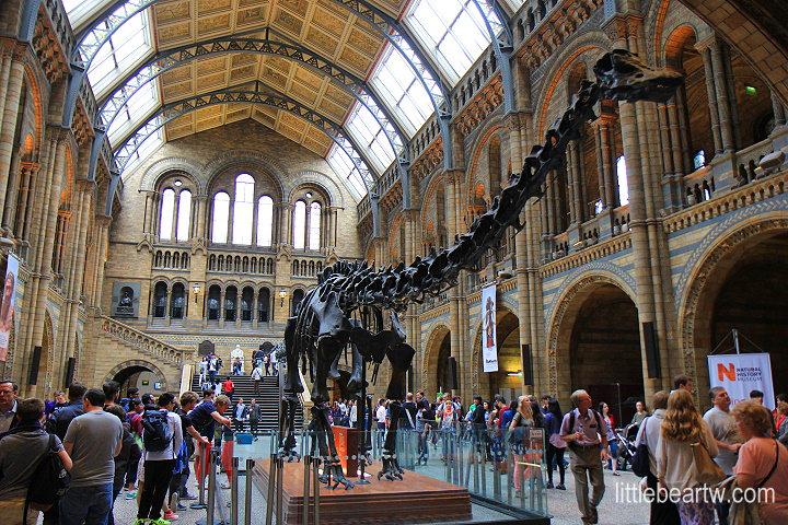 【英格蘭Day3-2】倫敦:自然史博物館(Natural History Museum).哈洛德百貨(Harrods)