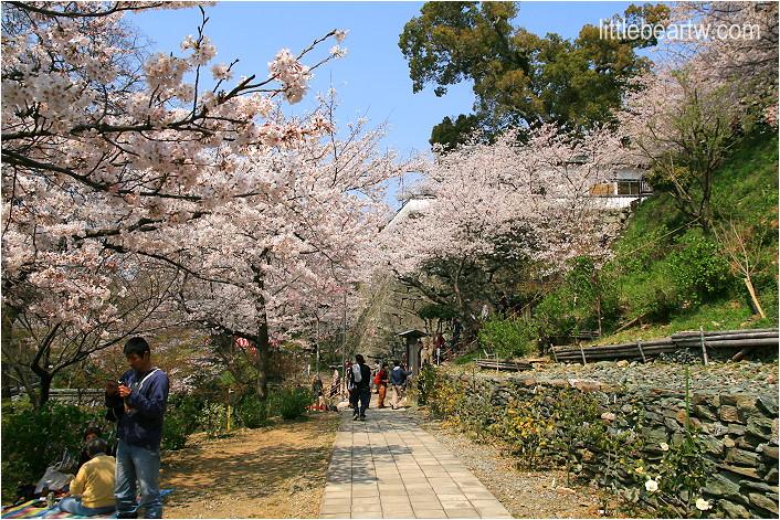 紀三井寺-52