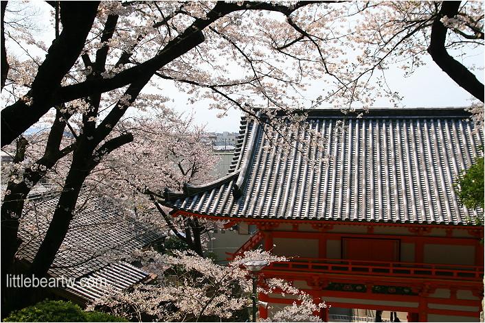 紀三井寺-87