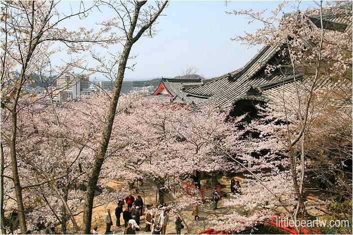 紀三井寺-85