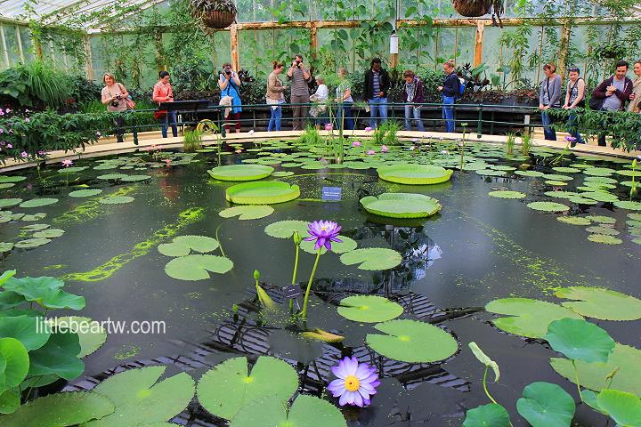 邱園Kew Gardens-56