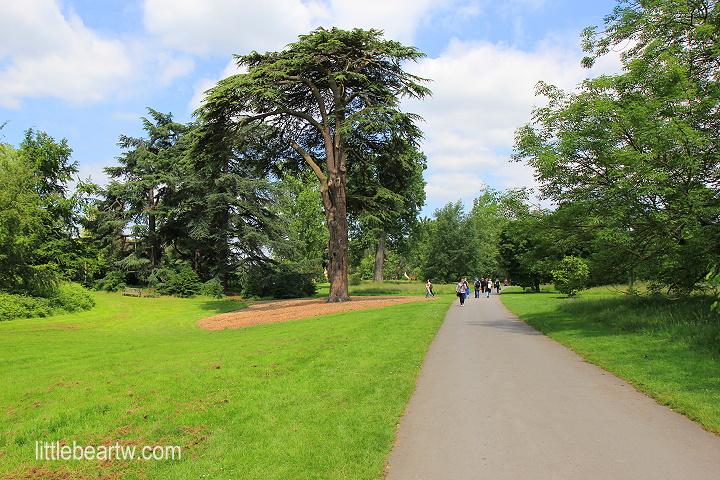 邱園Kew Gardens-38