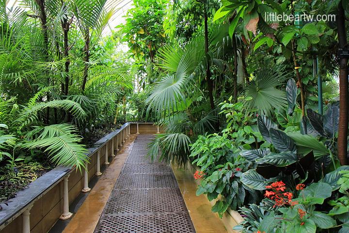 邱園Kew Gardens-17
